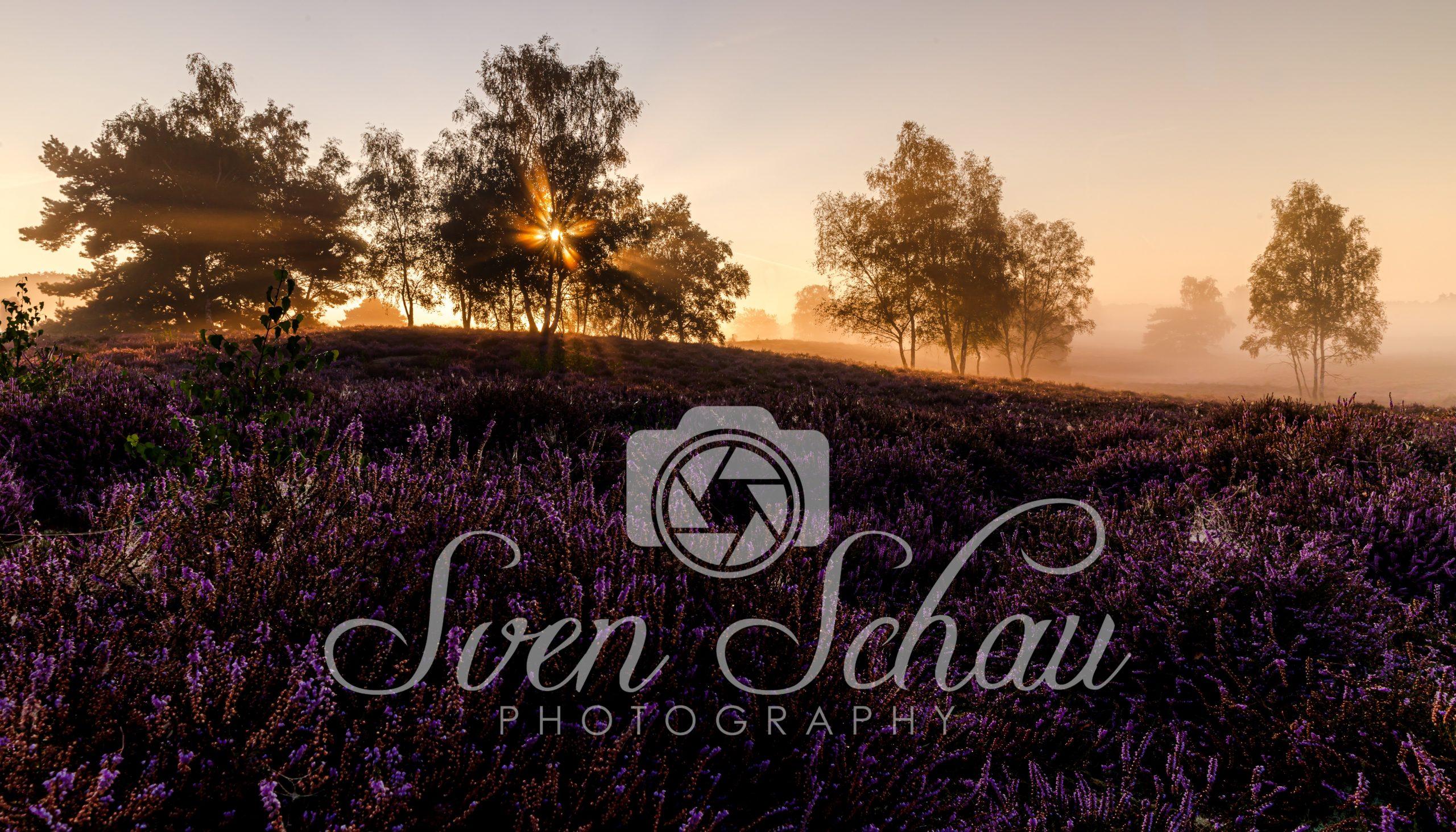 Schau Photography